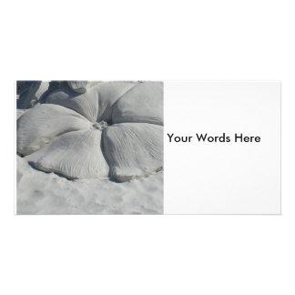 Hibiscus na areia cartão com fotos