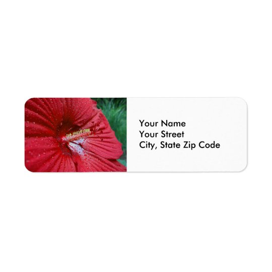 Hibiscus vermelho com etiqueta de endereço do
