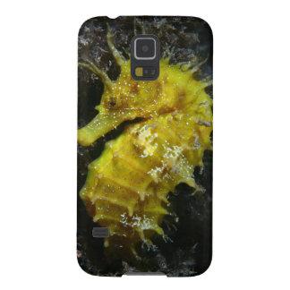 Hipocampo amarelo Guttulatus do cavalo marinho | Capinha Galaxy S5