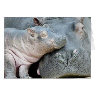 Hipopótamo Cartão Comemorativo