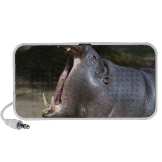 Hipopótamo com sua boca aberta caixinhas de som para notebook