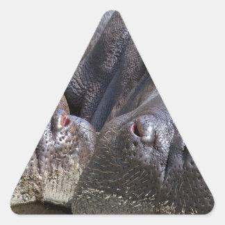 Hippo-78352 Adesivo Triangular