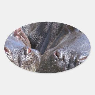 hippo-783 adesivo oval