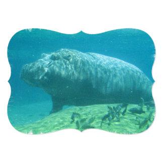 hippo-7 convite 12.7 x 17.78cm