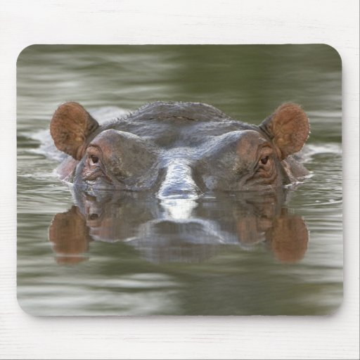 Hippo Mouse Pads