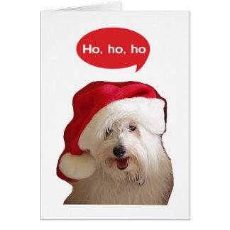 Ho Ho Ho cartão de Natal do cão do algodão