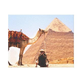 Homem com um camelo