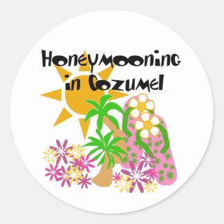 Honeymooning em Cozumel Adesivo