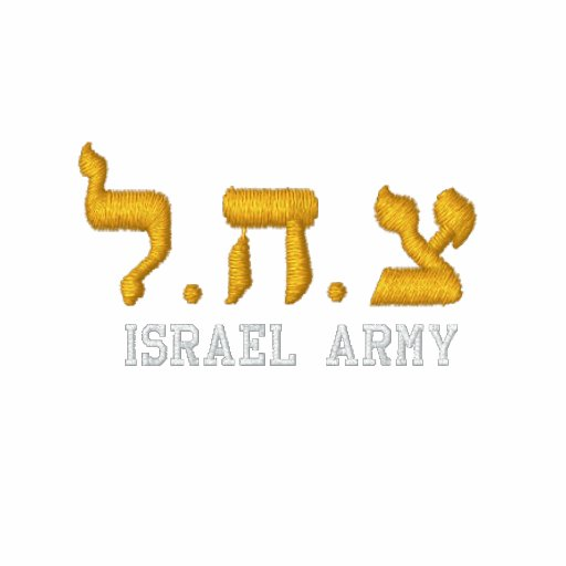 Hoodie do fecho de correr do exército de Israel -  Moleton Bordado
