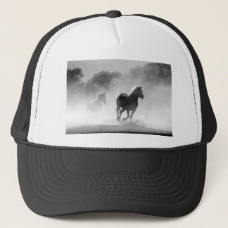horse-430441 boné