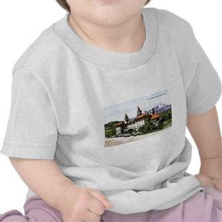Hotel dos Antlers, primaveras da cor, Colorado T-shirt