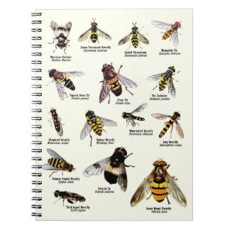 Hoverflies do Reino Unido - caderno