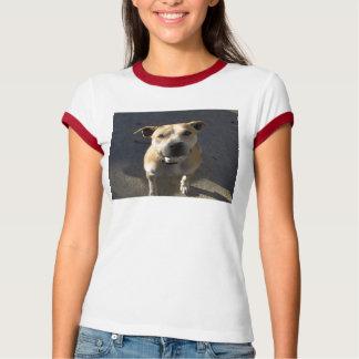 HPIM0889, ajudam um neutro Michael Vick do pitbull Camiseta