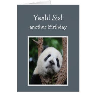 Humor triste da irmã do feliz aniversario de urso cartão comemorativo