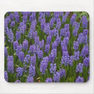 Hyacint roxo mouse pad