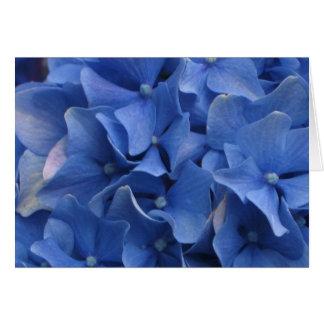 Hydrangeas azuis cartão comemorativo