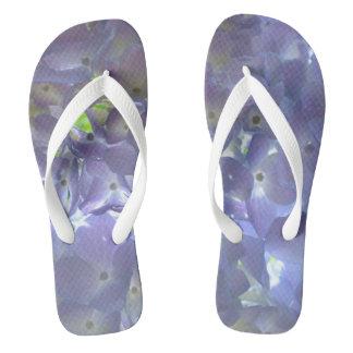 Hydrangeas da lavanda chinelos