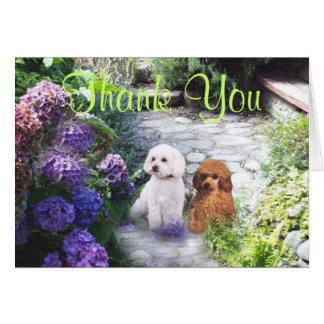 Hydrangeas dos cartões de agradecimentos da