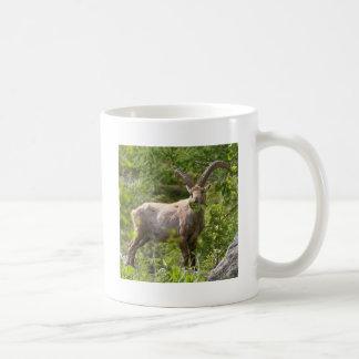 Íbex alpino que come as folhas caneca de café