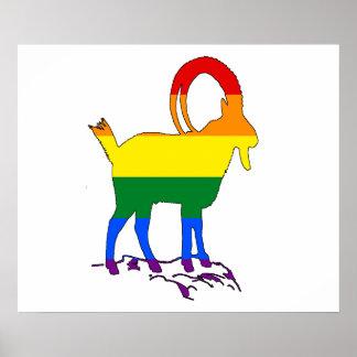 Íbex do arco-íris pôster