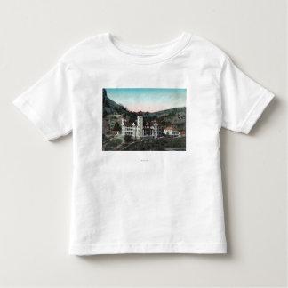 Ideia exterior dos primaveras Bldg de mineral de Camiseta