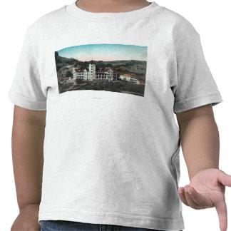 Ideia exterior dos primaveras Bldg de mineral de T Camiseta