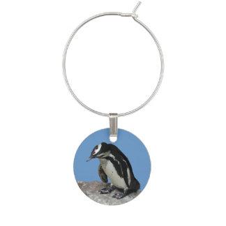 Identificador De Taças Encanto do vinho do pinguim