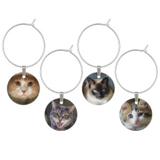 Identificador De Taças Quatro caras do gato e do gatinho