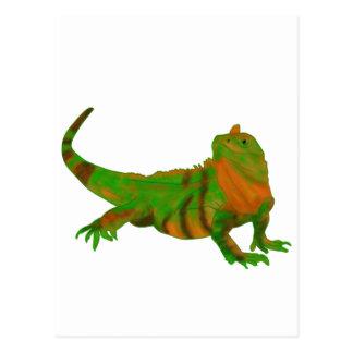 Iguana de Costa Rica Cartão Postal