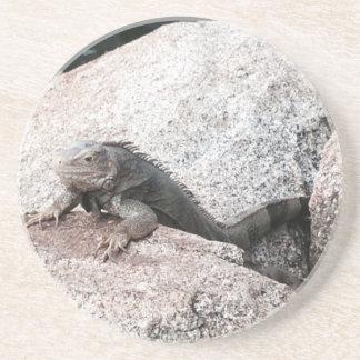 Iguana selvagem porta-copos de arenito