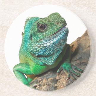 Iguana verde porta-copos