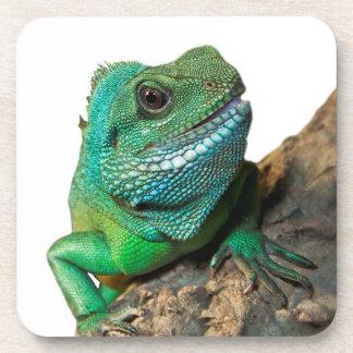 Iguana verde porta copos