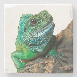 Iguana verde porta copos de pedra