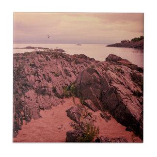 Ilha da gaivota azulejos