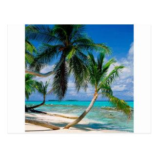 Ilha tropical Tepuka Tuvalu Cartão Postal