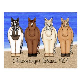 Ilha VA de Chincoteague e cartão dos pôneis