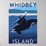 Ilha, WashingtonOrca e vitela de Whidbey Impressão