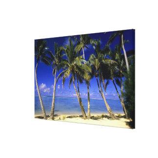 Ilhas Cook alinhadas palma 6 da praia Impressão Em Tela