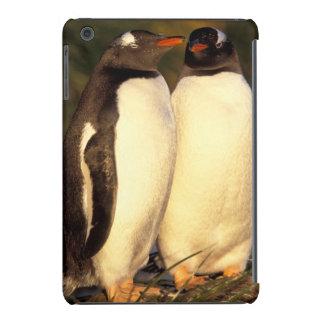 Ilhas de Malvinas. Pinguins de Gentoo.  Capa Para iPad Mini Retina