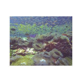 Ilhas subaquáticas Tailândia de Similan do paraíso Impressão Em Tela