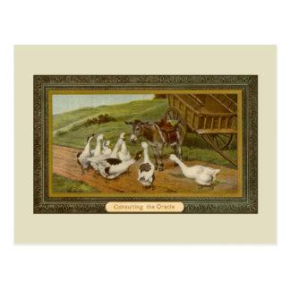 Ilustração animal do vintage que consulta Oracle Cartão Postal