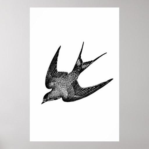 Ilustração da andorinha do vintage - pássaro 1800' impressão