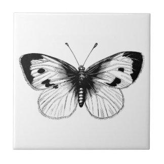 Ilustração da borboleta de couve branca do vintage azulejos de cerâmica