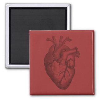 Ilustração do coração do vintage ímã quadrado