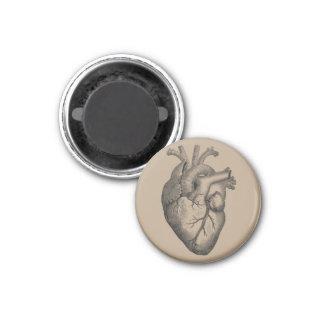 Ilustração do coração do vintage ímã redondo 2.54cm