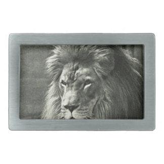 Ilustração do leão