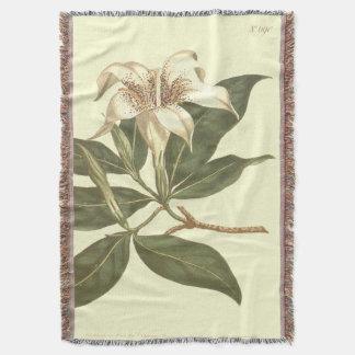 Ilustração florescida manchada do Gardenia Coberta
