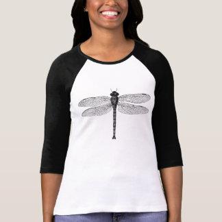 Ilustração preto e branco da libélula do vintage t-shirt