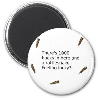 Imã 1000 fanfarrões e um cascavel (que sente
