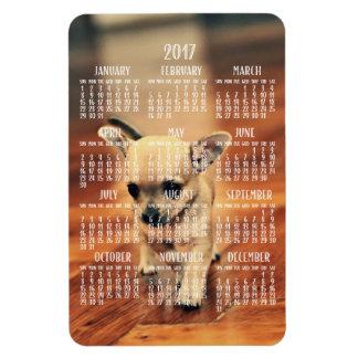 Ímã 2017 da foto do calendário da chihuahua 4x6